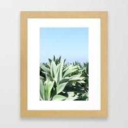 palisades agave Framed Art Print
