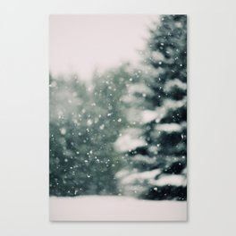 Winter Daydream Canvas Print