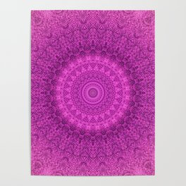 Sunflower Peacock Feather Bohemian Pattern \\ Aesthetic Vintage \\  Bright Fuchsia Pink Color Scheme Poster
