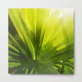 Tropical Palm Green Metal Print
