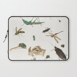 Insects, frogs and a snail Laptop Sleeve