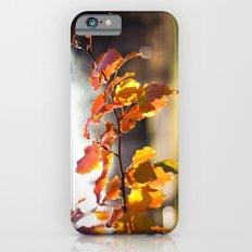 Embers III Slim Case iPhone 6s