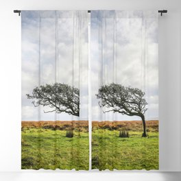 Windswept Tree Blackout Curtain