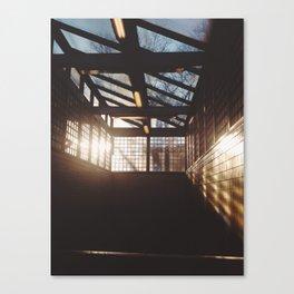 sunny septa Canvas Print
