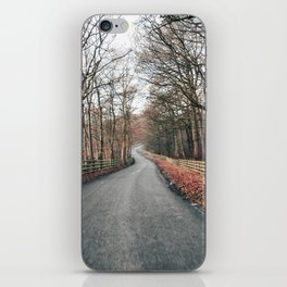winter country lane iPhone Skin