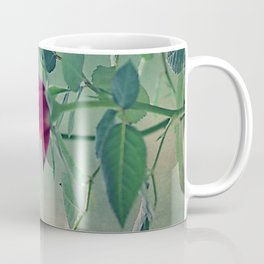 Pink roses in a pot Coffee Mug