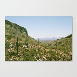 A Hot Day in the Canyon Canvas Print
