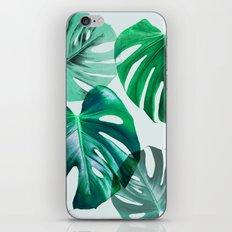 Monstera 1 iPhone & iPod Skin