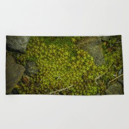 Part of the green path Beach Towel