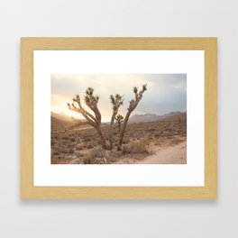 A Lovely Sunset Framed Art Print