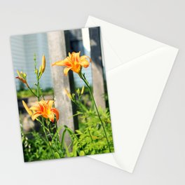Growing Lilys Stationery Cards