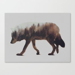 Norwegian Woods: The Wolf Canvas Print