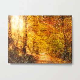Nature Forest  Metal Print
