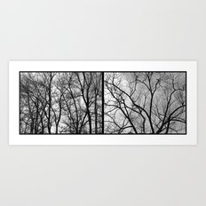 'Winter Trees Diptic 2' Art Print