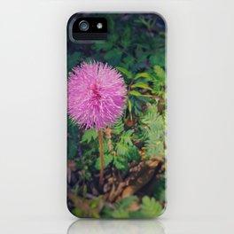 Sleeping Grass iPhone Case