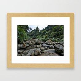 Forest Rocks Framed Art Print