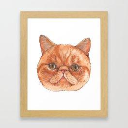 Betty aka The Snappy Cat- artist Ellie Hoult Framed Art Print