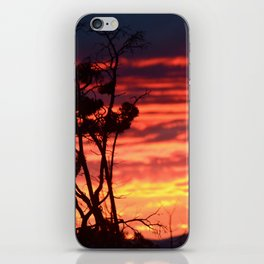 Central Oregon Sunset iPhone Skin