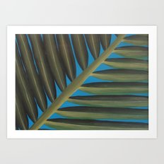 Tropical palm frond leaf Art Print