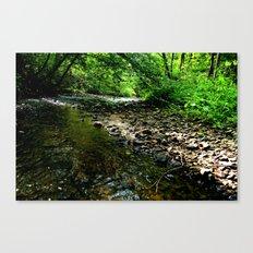 Elvish River Canvas Print