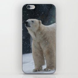 Polar iPhone Skin