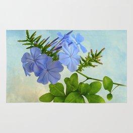 Blue Plumbago Rug