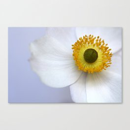 Pure and Simple Canvas Print