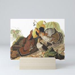 Ruffed Grouse by John Audubon Mini Art Print