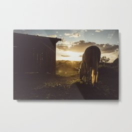 She's just amazing Metal Print