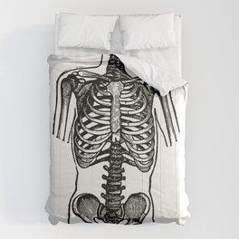 Bones. Comforters
