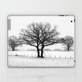 Three Winter Oaks Laptop & iPad Skin