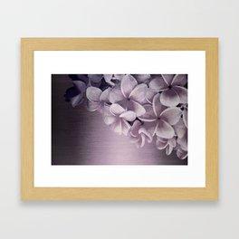 PLUMERIAS OMBRE II Framed Art Print