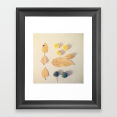 Yellow Autumn Collection Framed Art Print