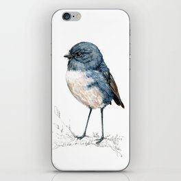 Toutouwai, New Zealand Robin bird iPhone Skin