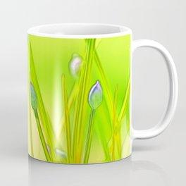 Allium 144 Coffee Mug