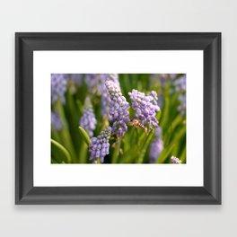 late spring Framed Art Print