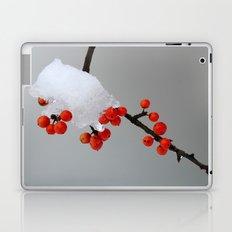 Berries in Snow Laptop & iPad Skin