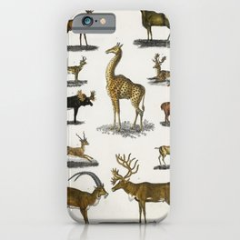 Collection of animal with antlers from A history of the earth and animated nature (1820) by Oliver G iPhone Case