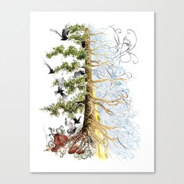 The Woods and The Water Canvas Print