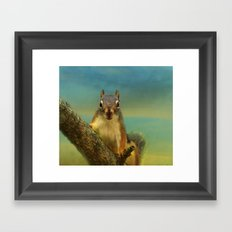 Little Red Squirrel Framed Art Print