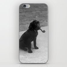 Pipe puffing dog. iPhone & iPod Skin