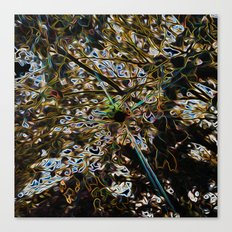 Flare Canvas Print