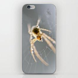 Little Spider iPhone Skin