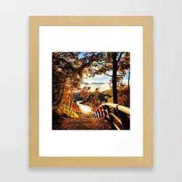 All gold everything Framed Art Print