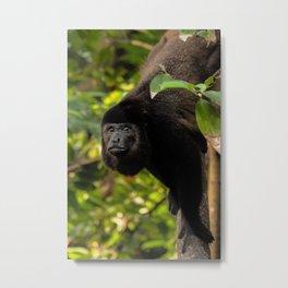 Stand Tall Papa Monkey Metal Print
