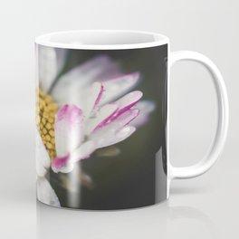 Raindrops on a daisy Coffee Mug