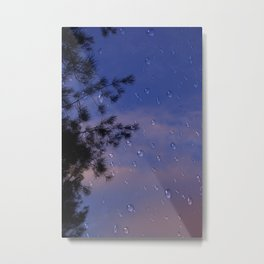 Nature expectations. Missing the rain. Metal Print