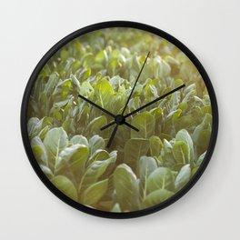 Nature photography, Italy sunset, italian photo, Puglia fine art, Sicilia, Wall Clock