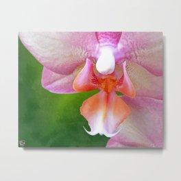 Jenn's Orchid Metal Print