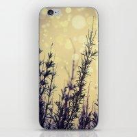 fireflies iPhone & iPod Skins featuring Fireflies by Kanelov